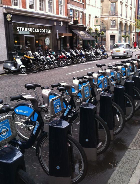 pretty bikes all in a row
