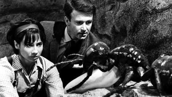 Doctor Who Carole Ann Ford William Russell