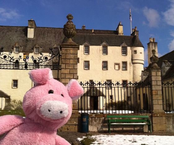 Nigel the Charity Pig in the Scottish Borders