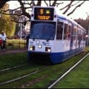 Amsterdam photo of the day: grass on the tramline