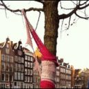 Amsterdam photo of the day: someone thought a tree needed a scarf