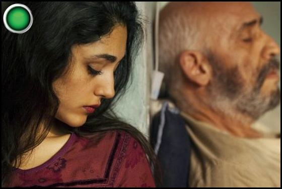 The Patience Stone green light Golshifteh Farahani Hamidreza Javdan