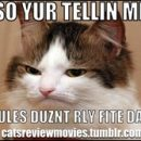 Cats Review Movies: a tumblr (by me)