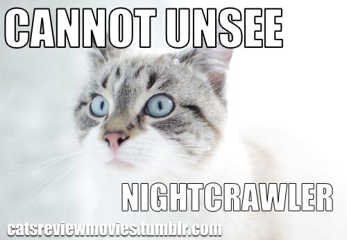 CRMnightcrawler