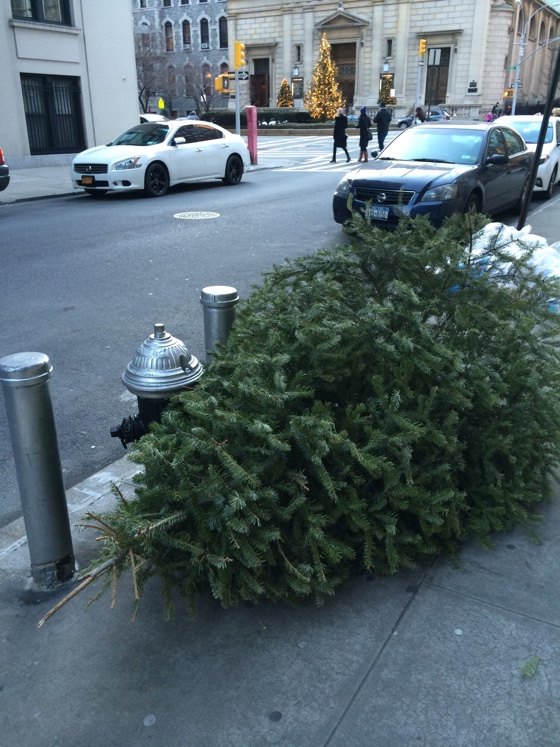 deadchristmastree