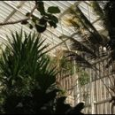 London photos: sci-fi greenhouse