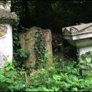London photos: spooky Abney Park