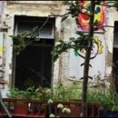London photos: inside Dalston Eastern Curve Garden