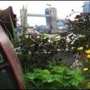 London photos: Garden Barge Square