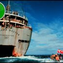 How to Change the World documentary review: the path to Greenpeace