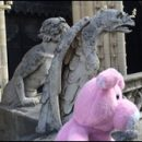 Nigel in Paris: face to face with gargoyles