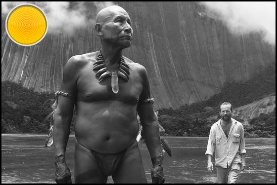Embrace of the Serpent yellow light