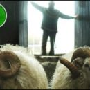 Rams (Hrútar) movie review: brothers in farms