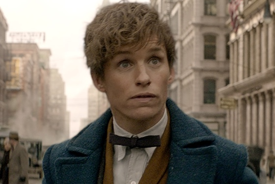 Fantastic Beasts and Where to Find Them Newt Scamander (Eddie Redmayne), sufferer of BRF: Befuddled Resting Face