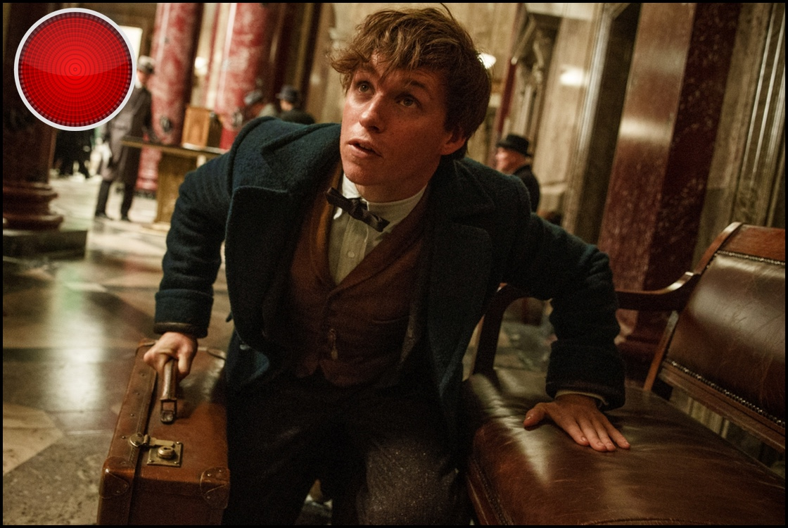 Fantastic Beasts and Where to Find Them red light