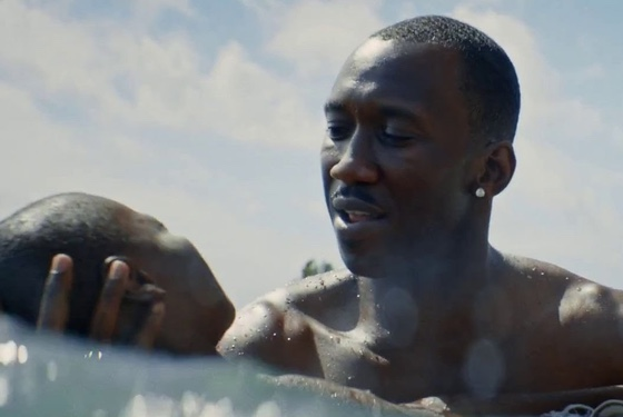 Moonlight Mahershala Ali