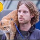 A Street Cat Named Bob movie review: pussyfooting around reality