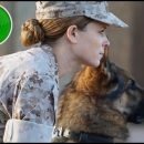 Megan Leavey (aka Rex) movie review: a soldier and her dog
