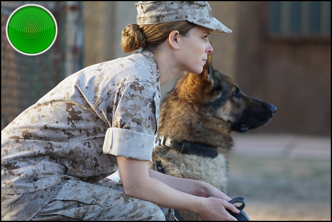 Megan Leavey green light