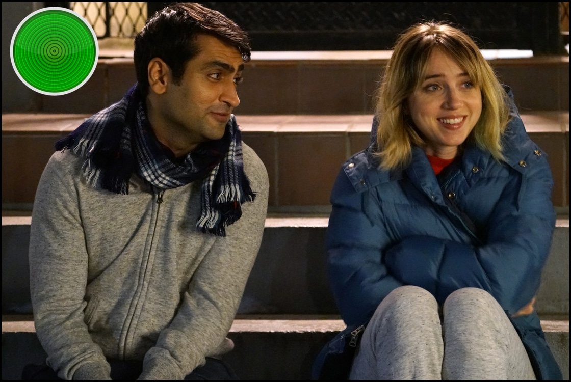 The Big Sick green light