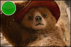 Paddington 2 movie review: wrap yourself up in this bear hug