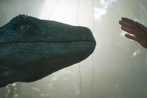 I want to pet a dinosaur!