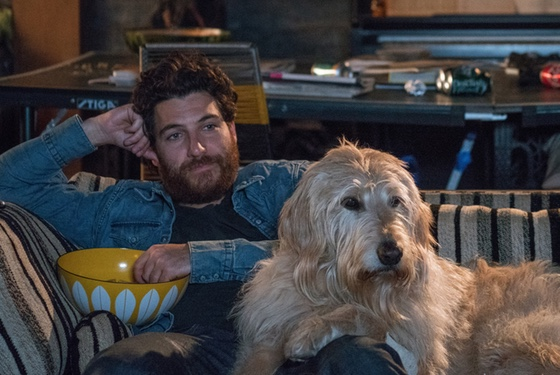 """Man, I know! I love Marley & Me too. Let's watch it together every night."""