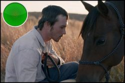The Rider movie review: when the work that makes a man is taken away