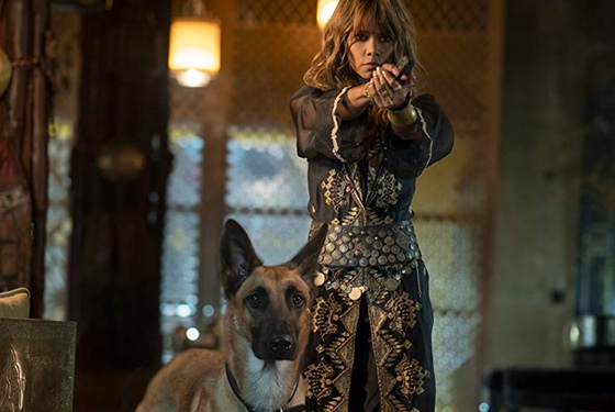 John Wick: Chapter 3 - Parabellum Halle Berry