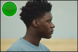 The Last Tree movie review: boy interrupted